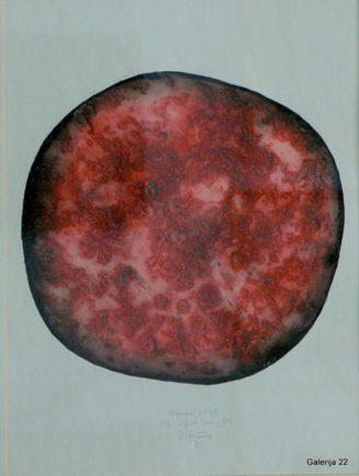 1-Tušek Vinko Neznani planet I