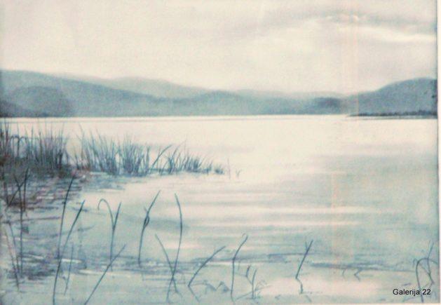 Klančar Bojan Trave umirajo na jezeru (2)